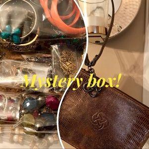 Mystery jewelry/Stella and Dot box